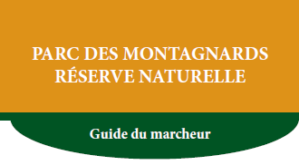Image-Guide du marcheur