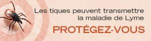 Bouton Web_FR