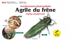 (Photo : Agence canadienne d'inspection des aliments)