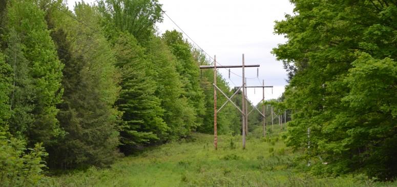 Photo paysage Bulletin Cleveland